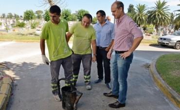 San Fernando renueva y mejora el Cementerio Municipal