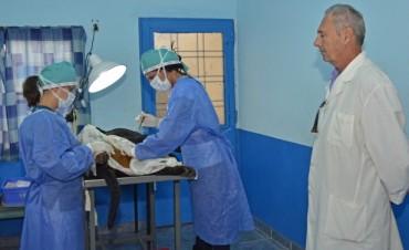 Se realiza en el barrio Fate un operativo de castración y vacunación de mascotas