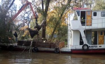 Tareas de destronque en el Delta