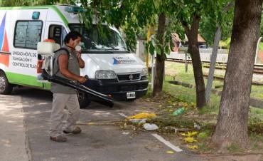 El Municipio continúa con fumigaciones preventivas contra todo tipo de plagas