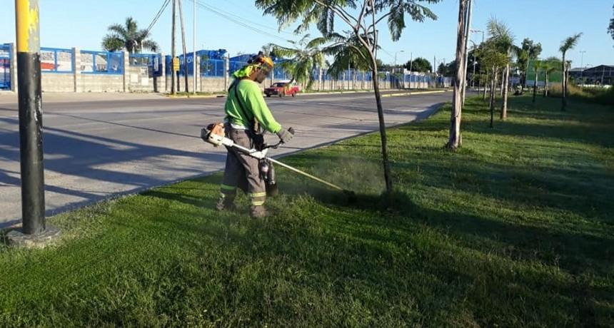San Fernando sostuvo tareas de mantenimiento y limpieza en la vía pública