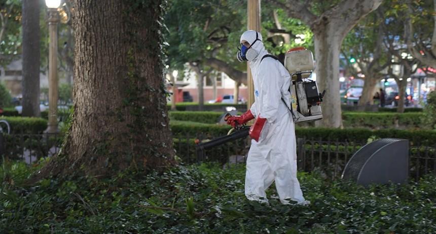 San Fernando avanza para prevenir el dengue en las plazas