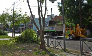 Se realizan trabajos de mejora edilicia y ambiental en las escuelas de San Fernando