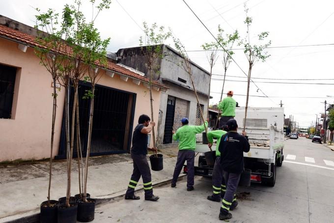 Continúa el 'Plan de Forestación' en San Fernando