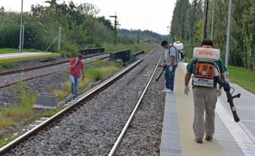 San Fernando continúa la fumigación contra el dengue en estaciones ferroviarias