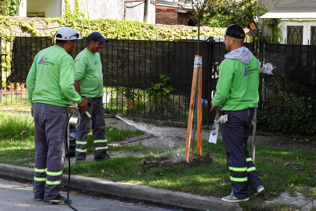 San Fernando profundiza su Plan de Forestación 2019
