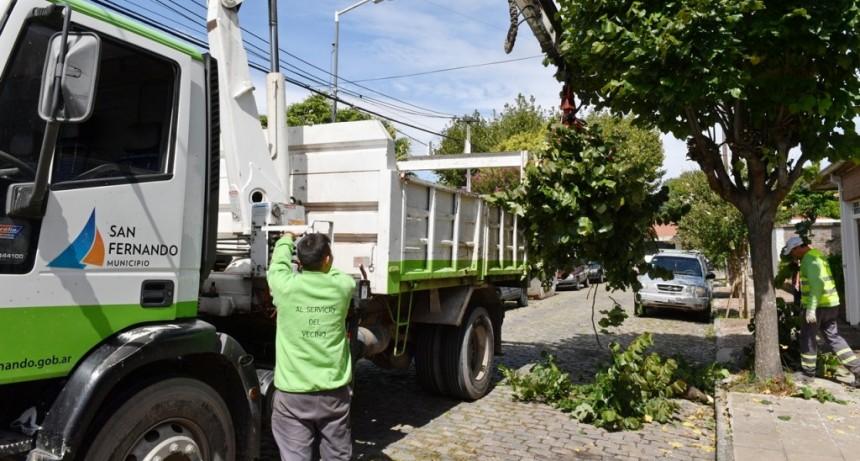 San Fernando sostiene trabajos diarios de despeje de luminarias y cámaras de seguridad