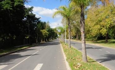 Obras de ensanche y pavimentación en Benavídez