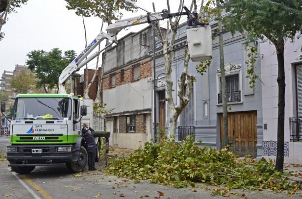 El Municipio realiza trabajos de poda correctiva en Victoria y el casco histórico de San Fernando