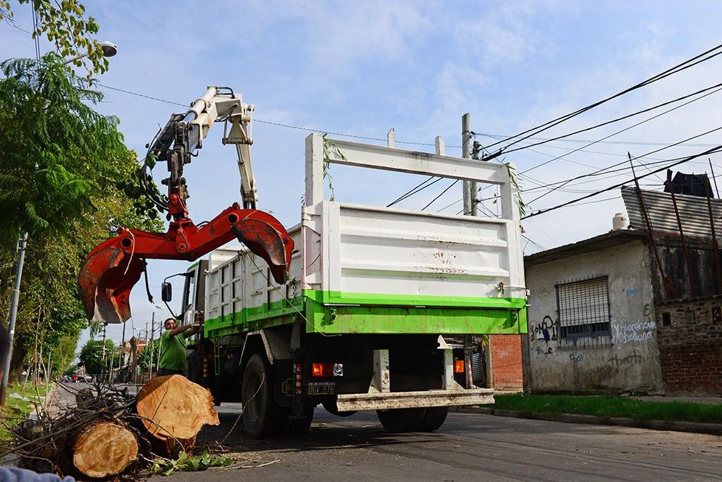 El COEM de San Fernando intervino tras la caída de un árbol sobre una vivienda