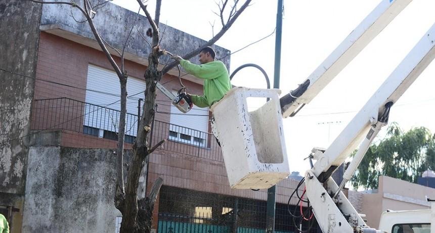 El COEM de San Fernando realizó tareas preventivas ante el fuerte temporal