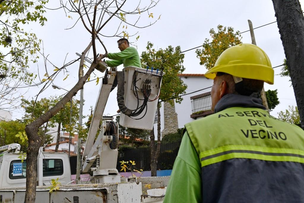 San Fernando inició el Plan de Poda 2019