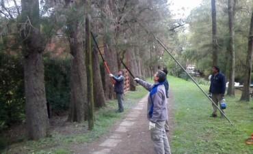 Nuevos trabajos de mantenimiento en el Museo Sarmiento