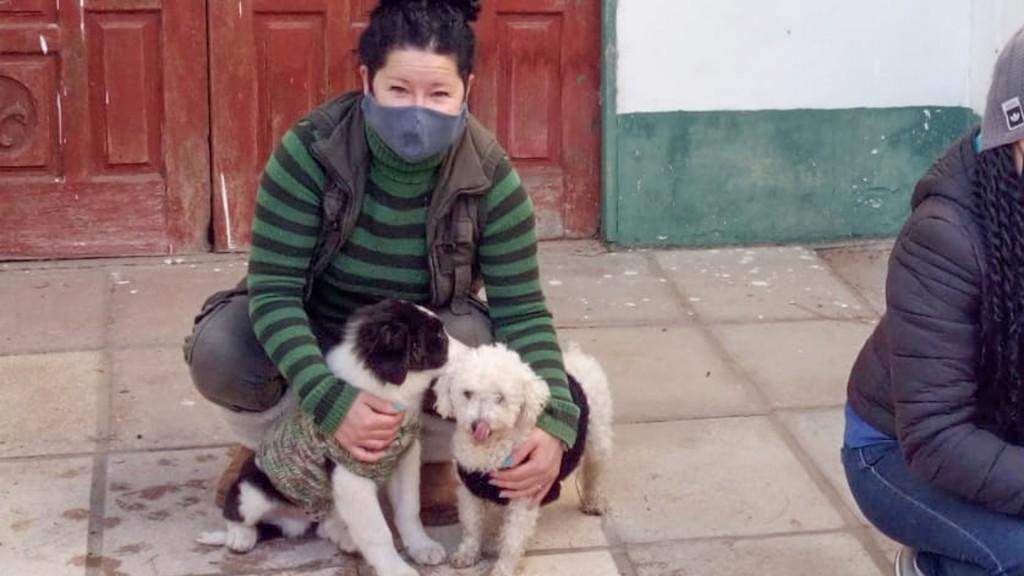 Zoonosis de San Fernando continúa realizando operativos en el Delta para la atención de mascotas