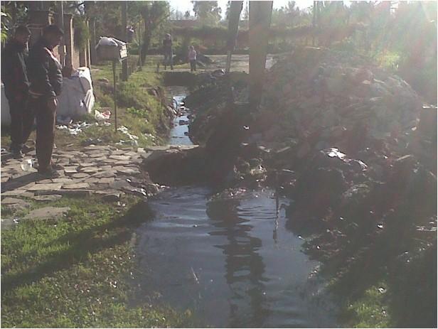 Tareas de limpieza en Nuevo Delta