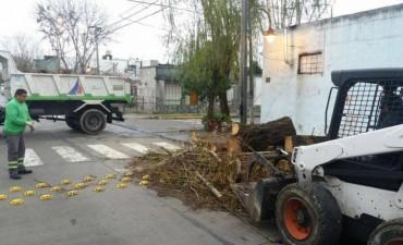 San Fernando sostiene operativos diarios de remoción de montículos y ramas