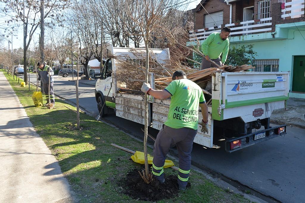 San Fernando continúa con su Plan de Forestación en el barrio Fate