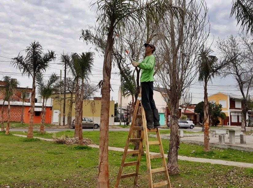 El Municipio realizó trabajos de forestación y parquización en el barrio Villa Jardín