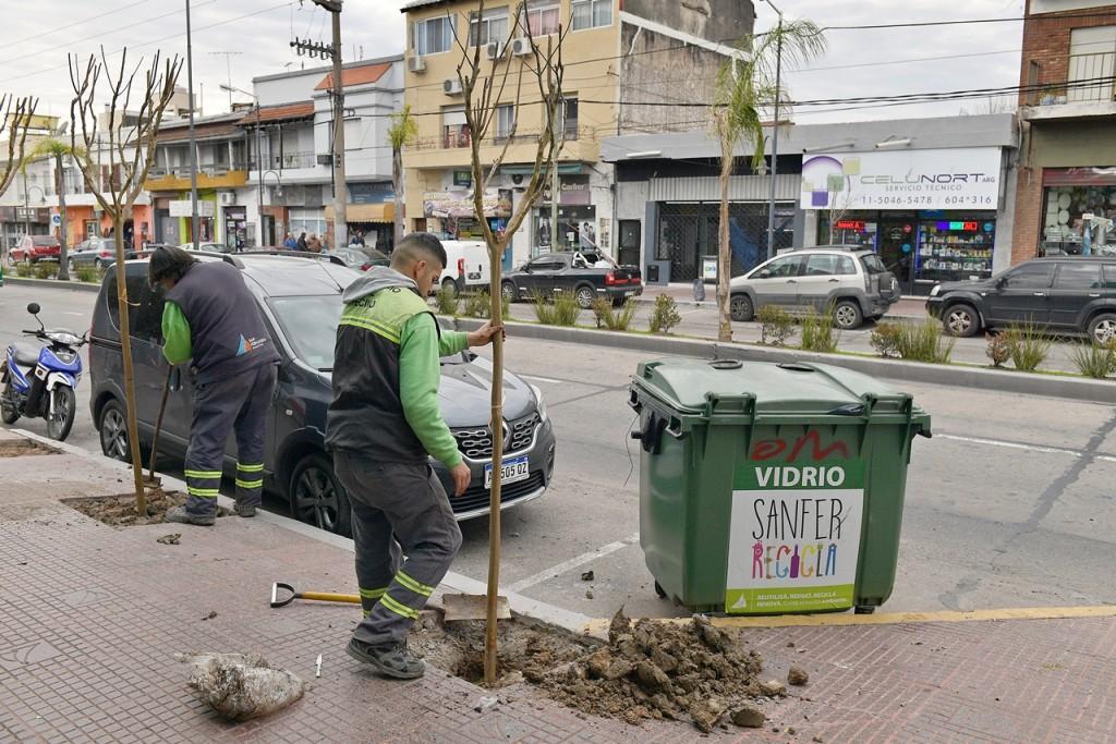 San Fernando profundiza el Plan de Forestación en Av. Avellaneda