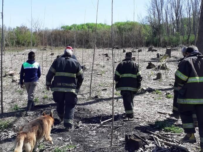 El Municipio y Bomberos extinguieron un incendio en el Delta de San Fernando