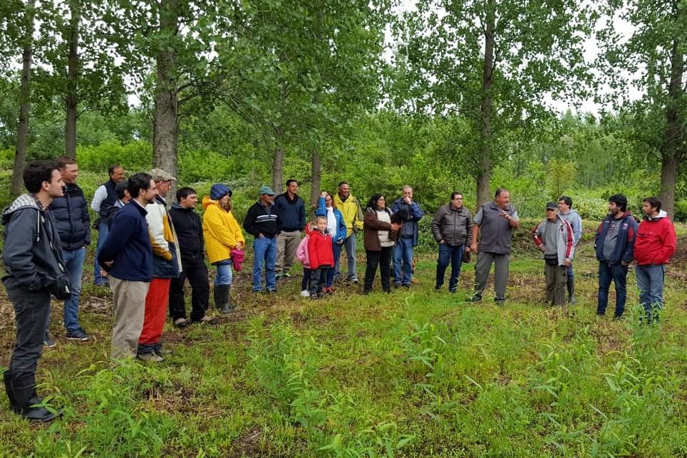 San Fernando acompañó al INTA y productores forestales en un encuentro anual