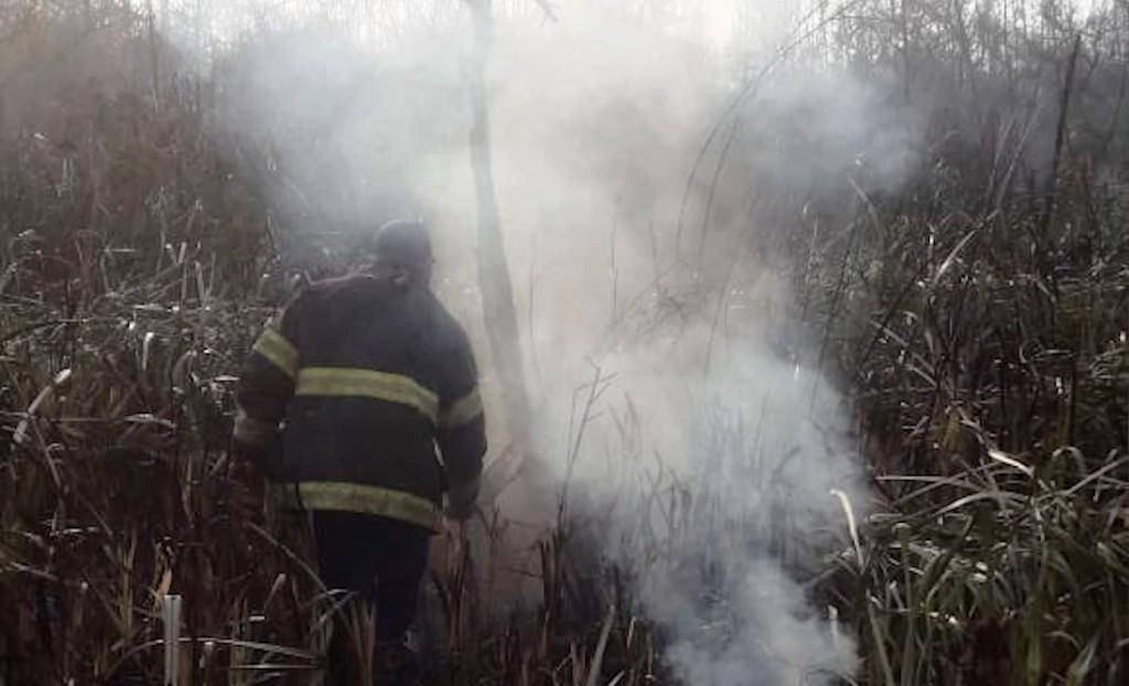 Bomberos de San Fernando extinguieron focos de incendios en el Delta