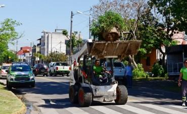 El Municipio realizó un operativo de limpieza y prevención del dengue en Virreyes