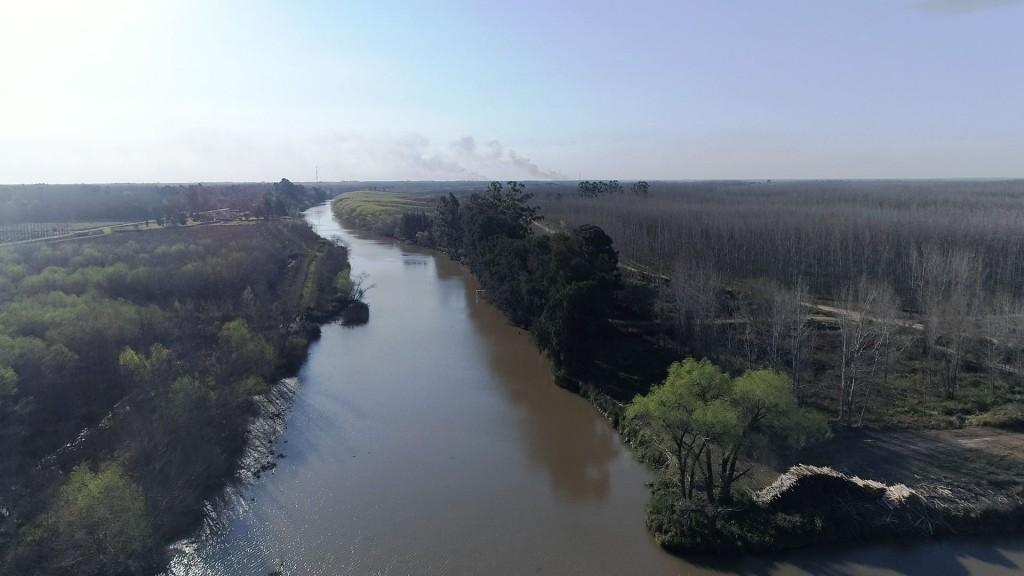 San Fernando celebra 20 años desde que la UNESCO declaró la Reserva de Biósfera del Delta del Paraná